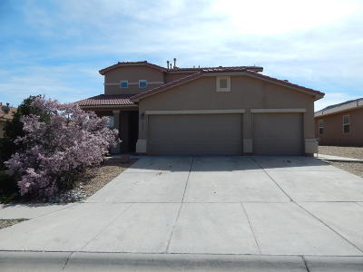 Valencia County Single Family Home For Sale: 3561 High Plains Street SW