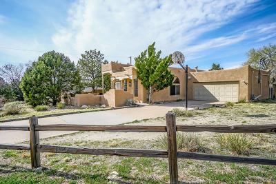 Albuquerque Single Family Home For Sale: 14201 Encantado Road NE
