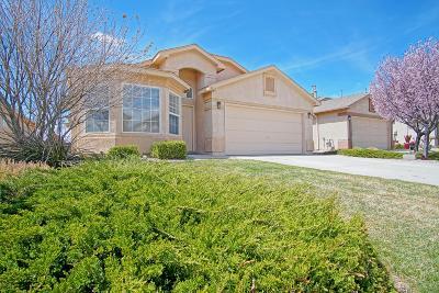 Rio Rancho Single Family Home For Sale: 3811 Desert Pinon Drive NE
