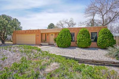 Bernalillo County Single Family Home For Sale: 1029 Santa Ana Avenue SE