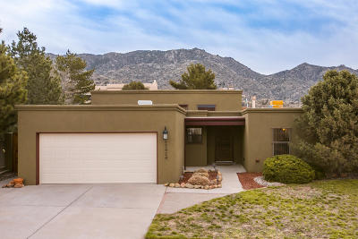 Albuquerque Single Family Home For Sale: 13424 Pinnacle View Place NE