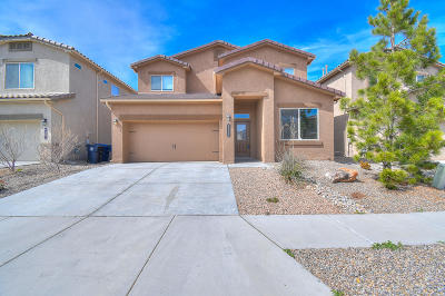 Albuquerque Single Family Home For Sale: 6927 Tombstone Road NW