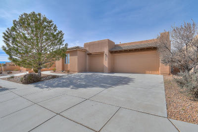 Albuquerque, Rio Rancho Single Family Home For Sale: 2524 Vista Manzano Loop NE