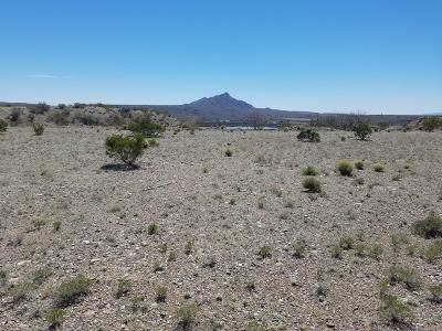 Sierra County Residential Lots & Land For Sale: 102 Avenido Loop