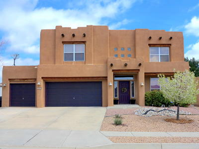 Rio Rancho Single Family Home For Sale: 7237 Pisa Hills Road NE