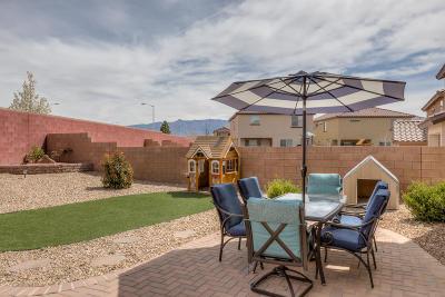Rio Rancho Single Family Home For Sale: 3132 Llano Vista Court NE