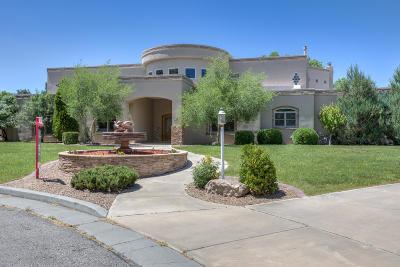 Single Family Home For Sale: 9915 San Bernardino Avenue NE