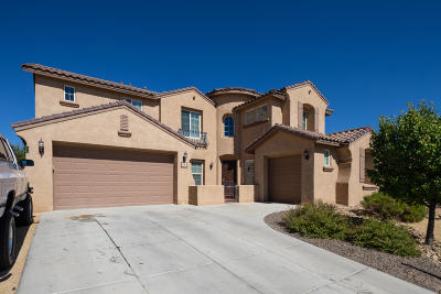 Albuquerque, Rio Rancho Single Family Home For Sale: 116 Los Miradores Drive NE