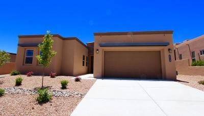 Albuquerque, Rio Rancho Single Family Home For Sale: 2528 Vista Manzano Loop NE