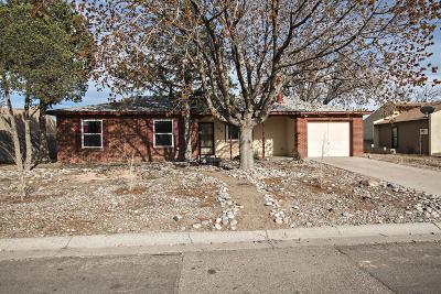 Rio Rancho Single Family Home For Sale: 106 Dakota Morning Road NE