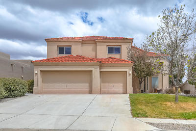 rio rancho Single Family Home For Sale: 3501 Calle Suenos SE
