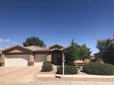 Albuquerque, Rio Rancho Single Family Home For Sale: 2841 La Luz Circle NE