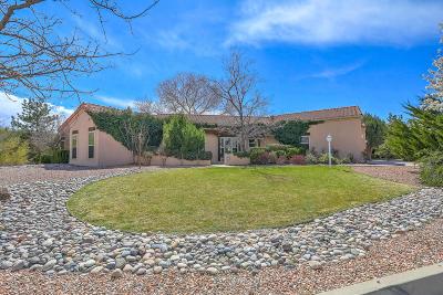 Rio Rancho Single Family Home For Sale: 3504 Newcastle Drive SE