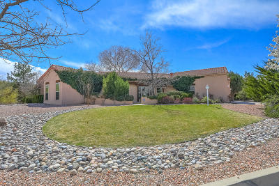 Albuquerque, Rio Rancho Single Family Home For Sale: 3504 Newcastle Drive SE