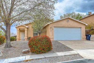 Albuquerque Single Family Home For Sale: 8205 Rancho Seguro NW