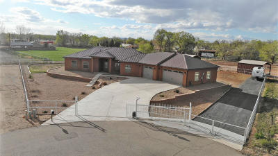 Valencia County Single Family Home For Sale: 380 Spencer Lane