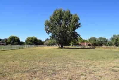 Residential Lots & Land For Sale: 6767 Corrales Rd Road NW