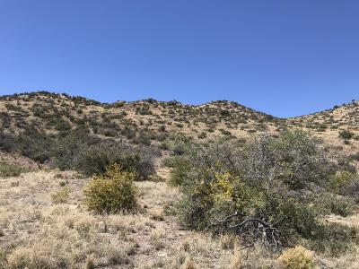 Sierra County Residential Lots & Land For Sale: County Road B005 #2
