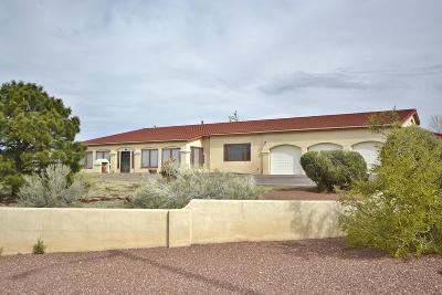 Albuquerque Single Family Home For Sale: 1619 Camino De La Sierra NE