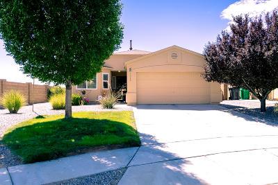 Rio Rancho Single Family Home For Sale: 1048 Desert Willow Place NE