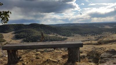 Catron County Residential Lots & Land For Sale: 45 Elk Ridge Road