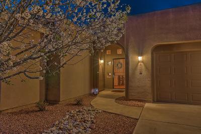 Single Family Home For Sale: 5115 San Adan Avenue NW