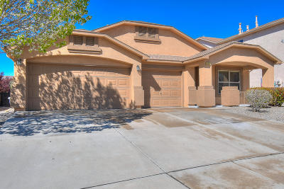 Rio Rancho Single Family Home For Sale: 3427 Joshua Tree Drive NE