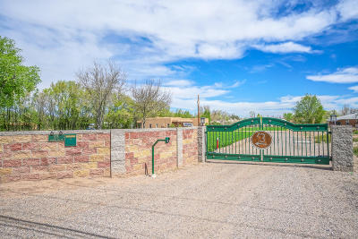 Albuquerque Single Family Home For Sale: 825 Alameda Boulevard NW