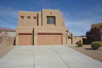 Bernalillo Single Family Home For Sale: 1103 San Luis Court