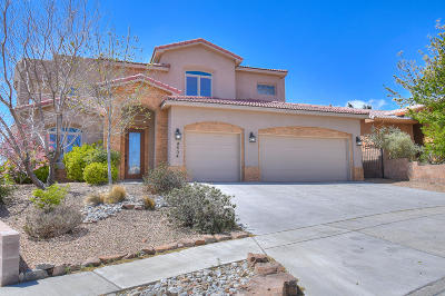 Albuquerque Single Family Home For Sale: 4604 Allegheny Court NW