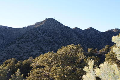 Albuquerque NM Residential Lots & Land For Sale: $109,900
