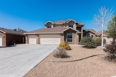 Albuquerque, Rio Rancho Single Family Home For Sale: 1509 Corte Castellana SE