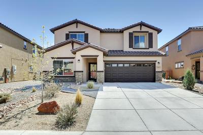 Rio Rancho Single Family Home For Sale: 3149 Llano Vista Court NE