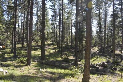 Jemez Springs NM Residential Lots & Land For Sale: $59,000