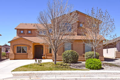 Albuquerque, Rio Rancho Single Family Home For Sale: 3439 Joshua Tree Drive NE