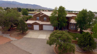 Albuquerque NM Single Family Home For Sale: $707,000