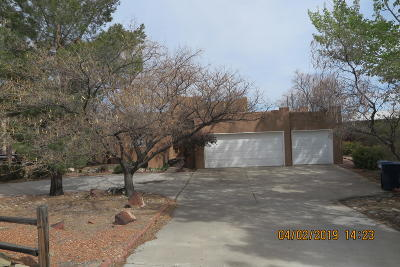 Los Lunas Single Family Home For Sale: 1107 Valley View Drive SW