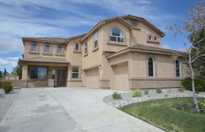 Rio Rancho Single Family Home For Sale: 1433 Ducale Drive SE