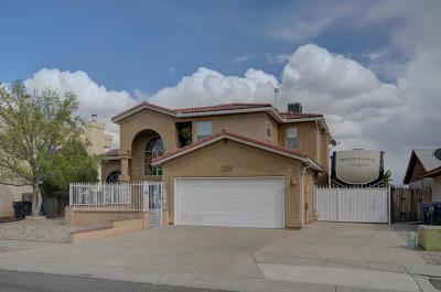Albuquerque Single Family Home For Sale: 6232 Mesquite Drive NW