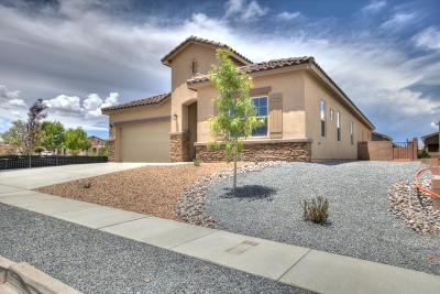 Rio Rancho Single Family Home For Sale: 4105 Mountain Trail Loop NE