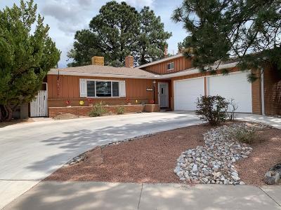 Albuquerque Single Family Home For Sale: 9301 Lagrima De Oro Road NE