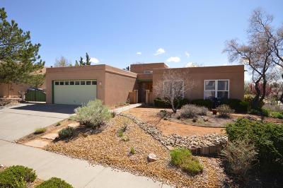 Albuquerque Single Family Home For Sale: 9216 Mabry Avenue NE