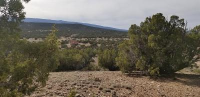 Sandia Park Residential Lots & Land For Sale: Lot 40 Anasazi Trail