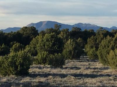 Bernalillo County Residential Lots & Land For Sale: 6 McComb Road