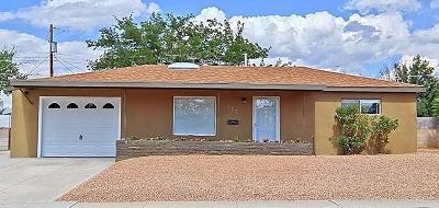 Albuquerque Single Family Home For Sale: 9029 Phoenix Avenue NE