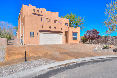 Albuquerque Single Family Home For Sale: 11031 Manganite Court NW