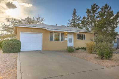Albuquerque Single Family Home For Sale: 1509 Altez Street NE