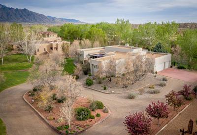 Bernalillo, Placitas Single Family Home For Sale: 692 Camino Vista Rio