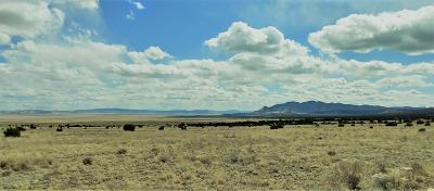 Catron County Residential Lots & Land For Sale: Southern Trail