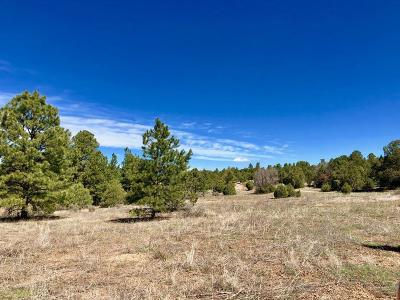 Bernalillo County Residential Lots & Land For Sale: Forest Road 320b